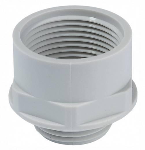 Wartel adapter PG21 M25 Polyamide Lichtgrijs Wiska APM 21/25 1 stuks