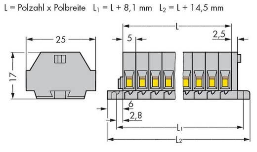 Klemstrook 5 mm Veerklem Toewijzing: L Grijs WAGO 260-104 100 stuks