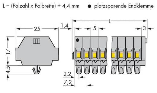 Klemstrook 5 mm Veerklem Toewijzing: L Grijs WAGO 260-161 25 stuks