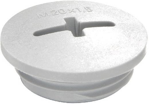 Blindstop M12 Polyamide Lichtgrijs (RAL 7035) Wiska EVSF 12 RAL 7035 1 stuks