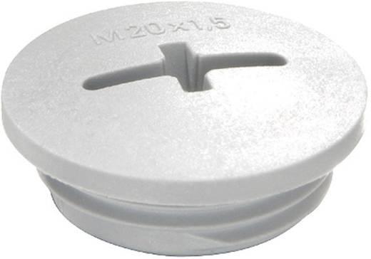 Blindstop M63 Polyamide Lichtgrijs (RAL 7035) Wiska EVSF 63 RAL 7035 1 stuks