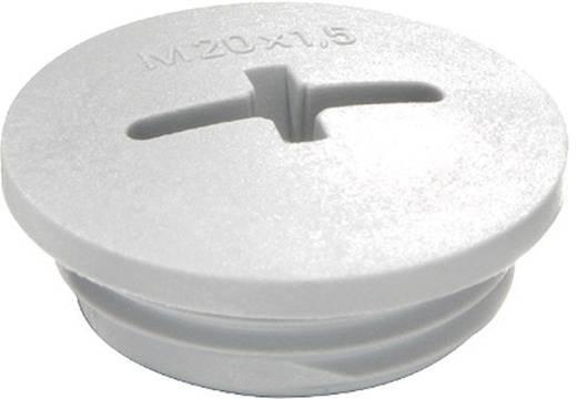 Blindstop M12 Polyamide Lichtgrijs (RAL 7035) Wiska EVSG M12 RAL 7035 1 stuks