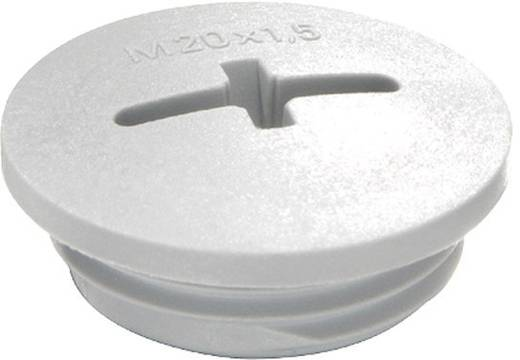 Blindstop M50 Polyamide Lichtgrijs (RAL 7035) Wiska EVSG M50 RAL 7035 1 stuks