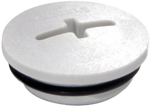 Blindstop M63 Polyamide Lichtgrijs (RAL 7035) Wiska EVSG-ORD M63 RAL 7035 1 stuks