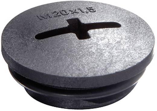 Blindstop M12 Polyamide Zwart (RAL 9005) Wiska EVSG-ORD M12 RAL 9005 1 stuks