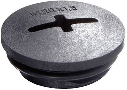 Blindstop M63 Polyamide Zwart (RAL 9005) Wiska EVSG-ORD M63 RAL 9005 1 stuks