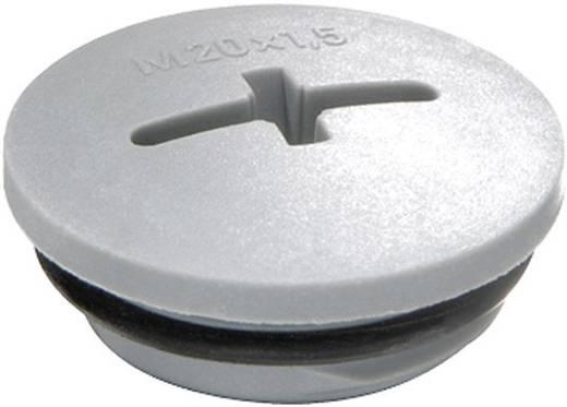 Blindstop M63 Polyamide Zilver-grijs (RAL 7001) Wiska EVSG-ORD M63 RAL 7001 1 stuks