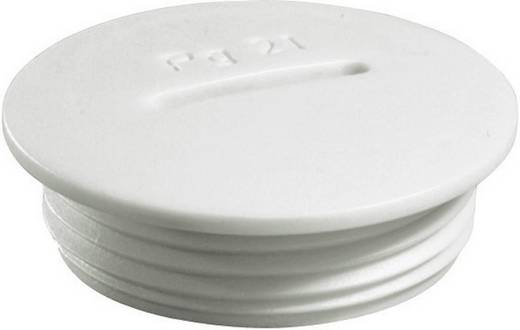 Blindstop PG7 Polyamide Lichtgrijs (RAL 7035) Wiska VSG 7 1 stuks