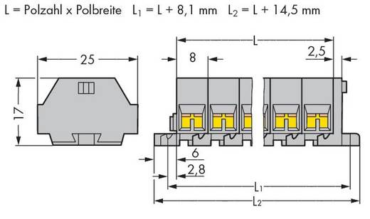 Klemstrook 8 mm Veerklem Toewijzing: L Grijs WAGO 260-212 25 stuks
