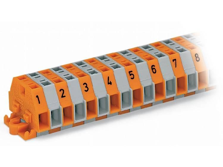 WAGO 260-410 Klemstrook 6 mm Veerklem Toewijzing: L Grijs 25 stuks