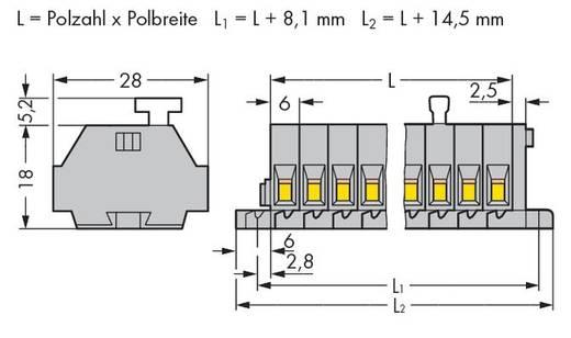 Klemstrook 6 mm Veerklem Toewijzing: L Grijs WAGO 261-110/331-000 25 stuks