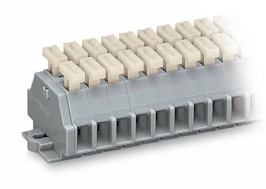 Klemstrook 6 mm Veerklem Toewijzing: L Grijs WAGO 261-102/341-000 100 stuks