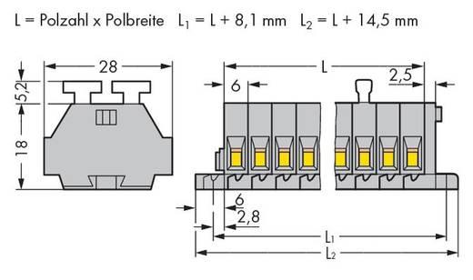 Klemstrook 6 mm Veerklem Toewijzing: L Grijs WAGO 261-108/341-000 50 stuks
