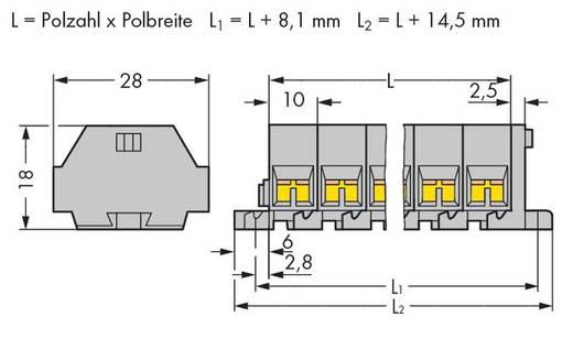 Klemstrook 10 mm Veerklem Toewijzing: L Grijs WAGO 261-206 50 stuks
