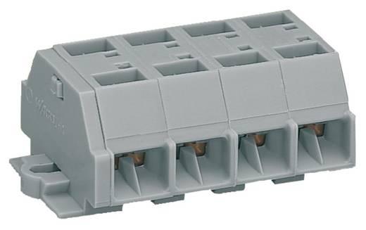 Klemstrook 10 mm Veerklem Toewijzing: L Grijs WAGO 261-204 100 stuks