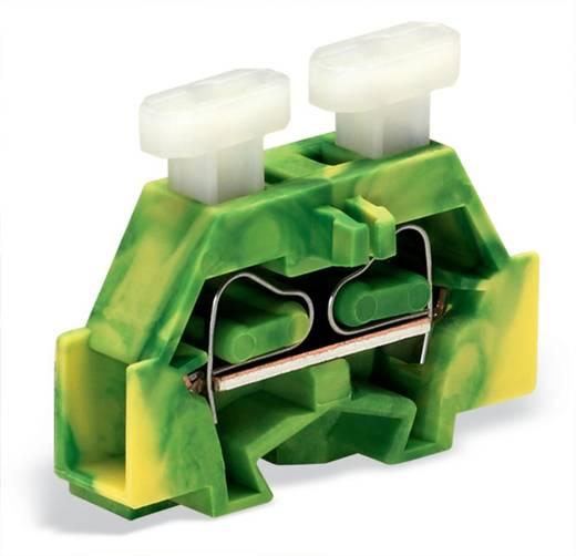 Aderklem 6 mm Veerklem Toewijzing: Terre Groen-geel WAGO 261-307/341-000 200 stuks