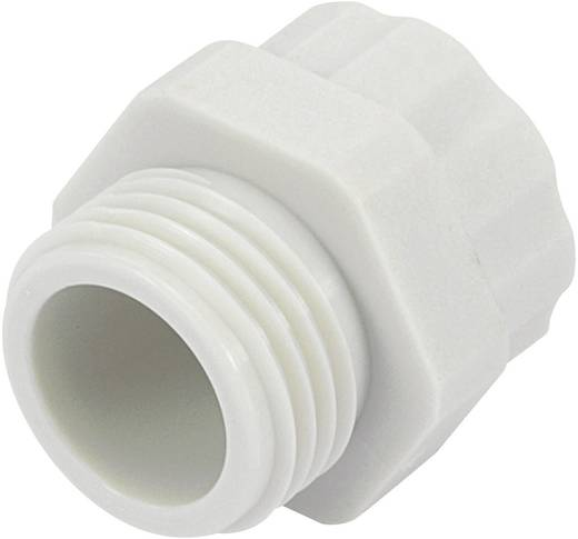 Wartel adapter PG16 M20 Polyamide Lichtgrijs (RAL 7035) KSS PR1620GY4 1 stuks