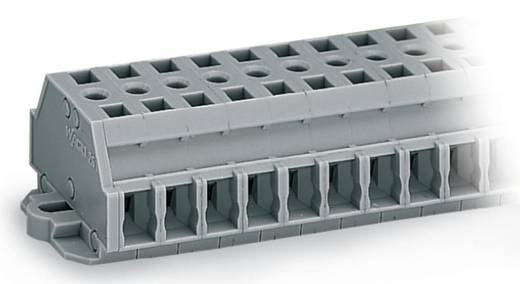 Klemstrook 6 mm Veerklem Toewijzing: L Grijs WAGO 261-429 50 stuks