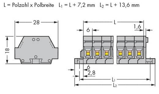 Klemstrook 6 mm Veerklem Toewijzing: L Grijs WAGO 261-428 50 stuks