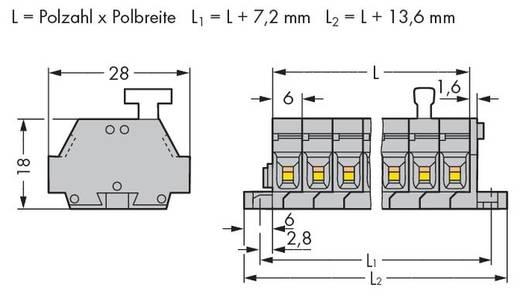 Klemstrook 6 mm Veerklem Toewijzing: L Grijs WAGO 261-428/331-000 50 stuks