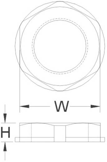 Contramoer M12 Polyamide Zilver-grijs (RAL 7001) KSS AGRL12LGY3 1 stuks