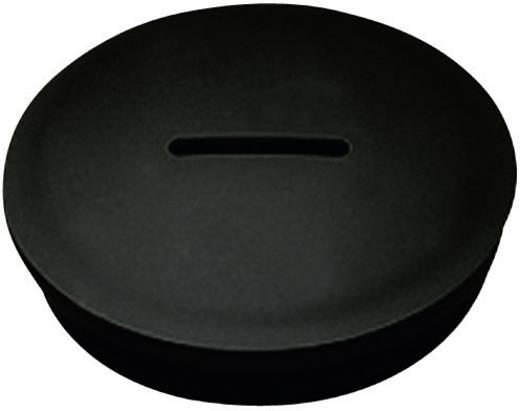 Blindstop PG16 Polyamide Zwart KSS PSPR16 1 stuks