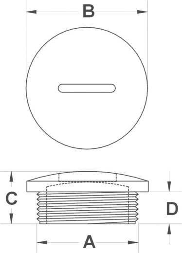 Blindstop M25 Polyamide Zwart KSS MSPR25 1 stuks