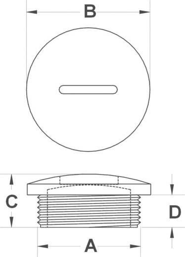 Blindstop M40 Polyamide Zwart KSS MSPR40 1 stuks