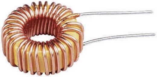Spoel Ringkern Radiaal bedraad Rastermaat 3 mm 30 µH 2 A 1 stuks