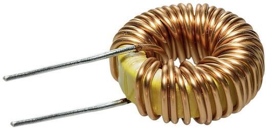 Spoel Ringkern Radiaal bedraad Rastermaat 13 mm 65 µH 1 stuks