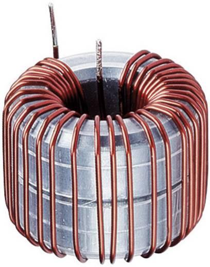 Spoel Ringkern Radiaal bedraad Rastermaat 3 mm 10300 µH 6 A 1 stuks