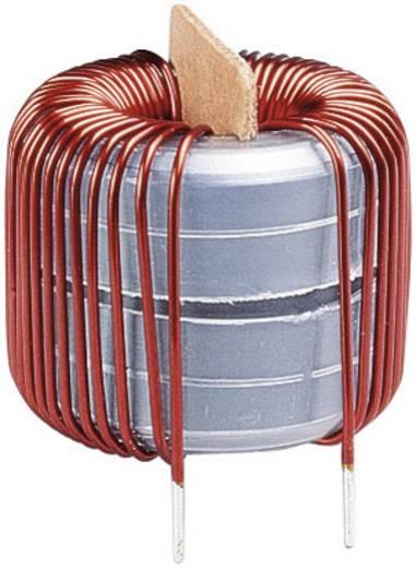 Spoel Ringkern Radiaal bedraad Rastermaat 7.5 mm 5300 µH 6 A 1 stuks