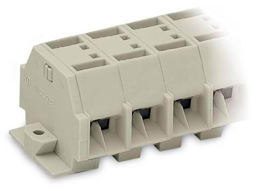 Klemstrook 12 mm Veerklem Toewijzing: L Grijs WAGO 262-285 100 stuks