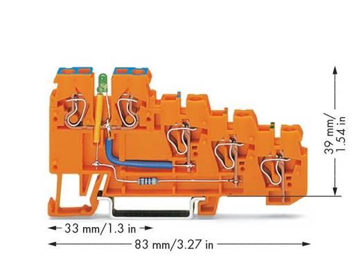 Initiatorklemmen 5 mm Veerklem Oranje WAGO 270-574/281-483 10 stuks