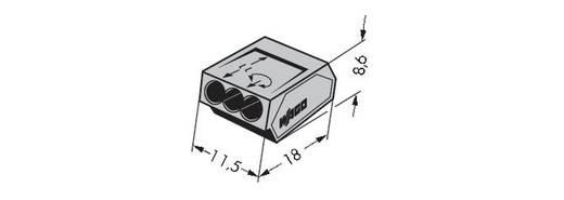 WAGO 273-100 Lasklem Flexibel: - Massief: 0.75-1.5 mm² Aantal polen: 3 1000 stuks Grijs