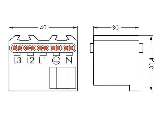 WAGO Verbindingsklem Flexibel: - Massief: 1.5-2.5 mm² Aantal polen: 5 100 stuks Wit
