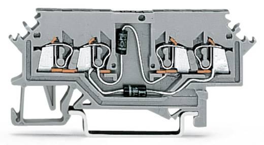 Diodeklem 4 mm Veerklem Toewijzing: L Grijs WAGO 279-620/281-408 100 stuks