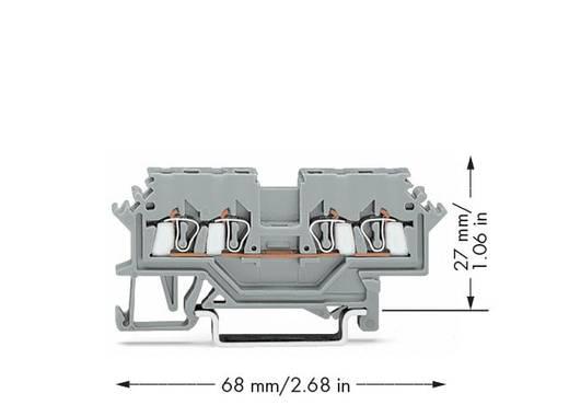 Doorgangsklem 4 mm Veerklem Toewijzing: L Grijs WAGO 279-621 100 stuks