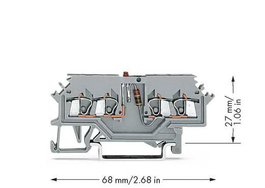 LED-klem 4 mm Veerklem Toewijzing: L Grijs WAGO 279-624/281-434 100 stuks
