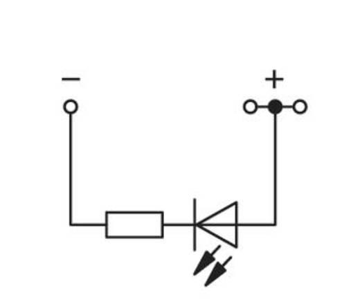 LED-klem 4 mm Veerklem Toewijzing: L Grijs WAGO 279-674/281-413 100 stuks