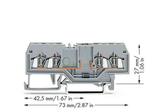 Diodeklem 4 mm Veerklem Toewijzing: L Grijs WAGO 279-815/281-411 100 stuks