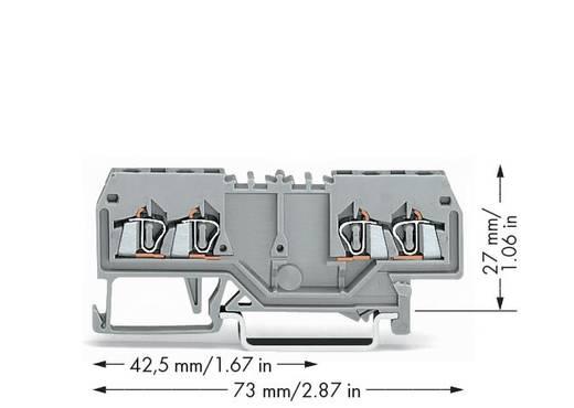 Doorgangsklem 4 mm Veerklem Toewijzing: L Grijs WAGO 279-826 100 stuks