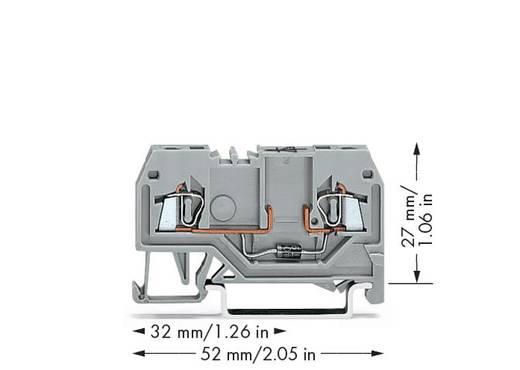 Diodeklem 4 mm Veerklem Toewijzing: L Grijs WAGO 279-915/281-411 100 stuks