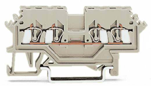 Doorgangsklem 4 mm Veerklem Toewijzing: L Grijs WAGO 279-990 100 stuks