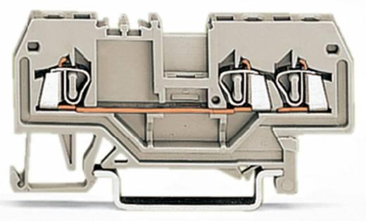 Doorgangsklem 4 mm Veerklem Toewijzing: L Grijs WAGO 279-993 100 stuks