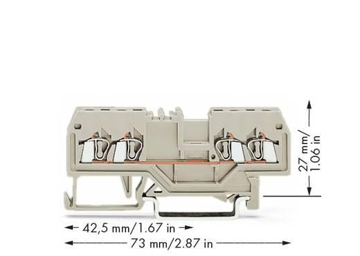 Doorgangsklem 4 mm Veerklem Toewijzing: L Grijs WAGO 279-994 100 stuks