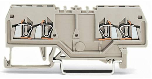 Doorgangsklem 4 mm Veerklem Toewijzing: L Grijs WAGO 279-995 100 stuks