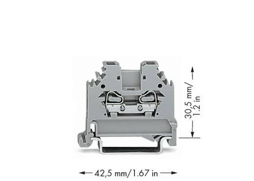 Doorgangsklem 5 mm Veerklem Toewijzing: L Grijs WAGO 280-101 100 stuks