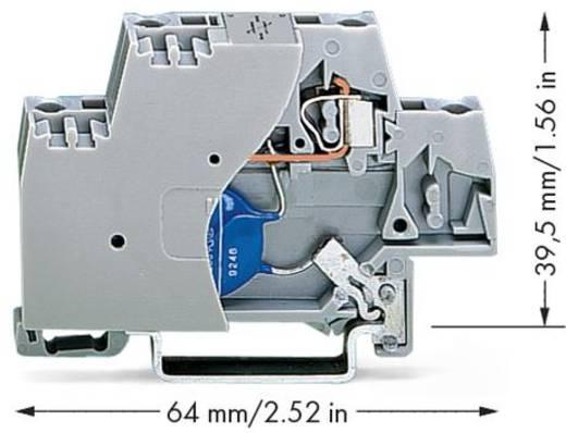 Aderklem 10 mm Veerklem Toewijzing: L Grijs WAGO 280-502/281-582 50 stuks