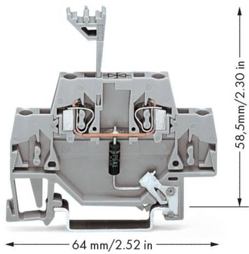 Aderklem 5 mm Veerklem Toewijzing: L Grijs WAGO 280-502/281-602 50 stuks